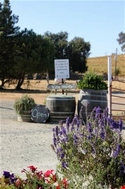 things to do in plymouth ca vino noceto winery plymouth ca top tips before you go