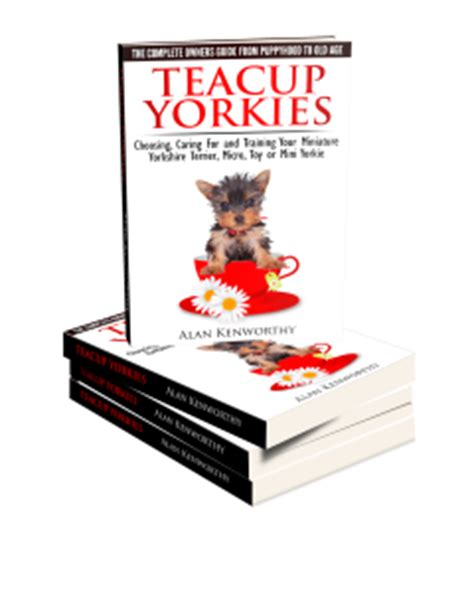 cost of teacup yorkies teacup yorkies the complete owners guide