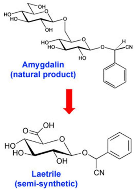 vitamin   laetrile  amygdalin