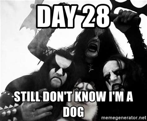 Black Metal Meme Generator - 8 shocking crimes in black metal articles ultimate