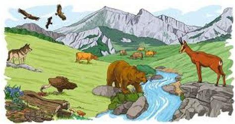 tipos de ecosistemas ecolog 237 a