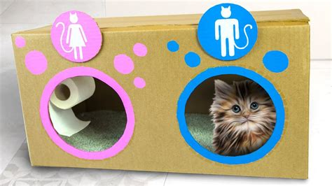 ideas for cat diy cat toilet craft ideas for on box yourself