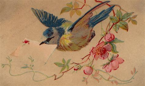 Trade A Gift Card - 9 blank victorian trade cards and calling cards the graffical muse