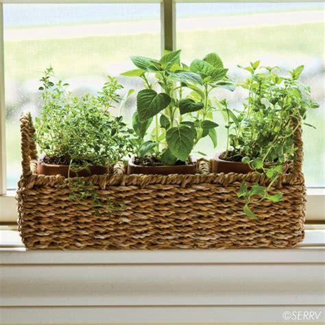 Window Sill Herb Garden Designs The World S Catalog Of Ideas