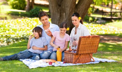 insieme di fiori nome collettivo verona tutta la citt 224 invitata al picnic collettivo di