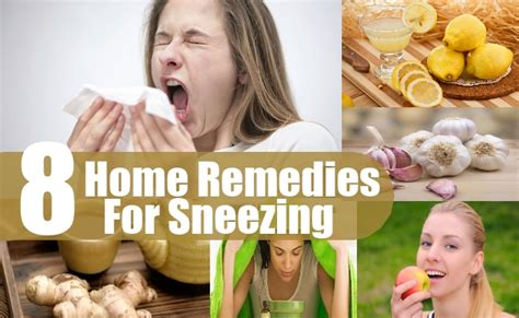 8 superbly beneficial home remedies for sneezing diy