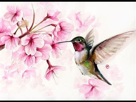 tutorial watercolor hummingbird best 25 hummingbird painting ideas on pinterest