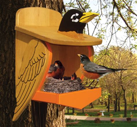 woodwork birdhouse plans robins pdf plans
