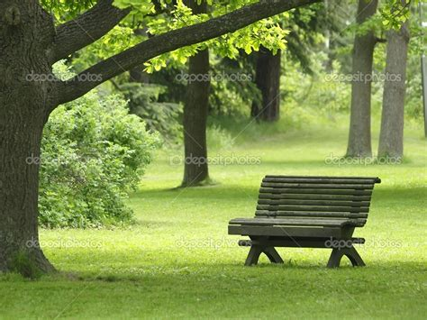 bench in the park park bench stock photo 169 laksen 1690229 baby with the