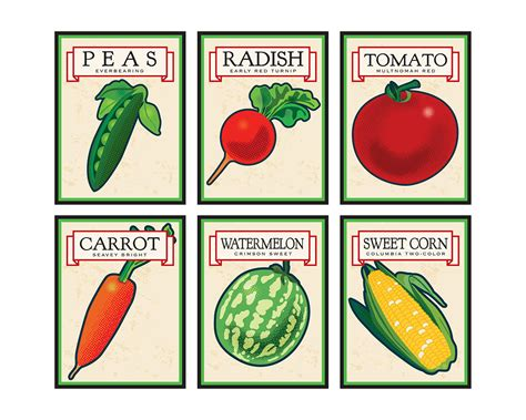 Spring Vegetable Garden Seeds Garden Ftempo Vegetable Garden Seed