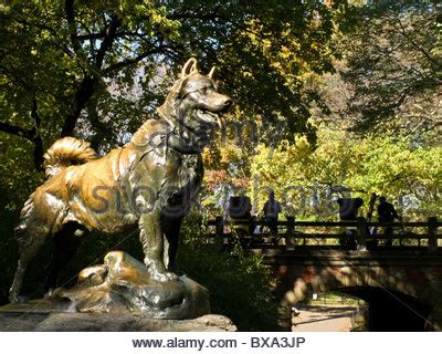 sled central sled statue balto in central park nyc stock photo royalty free image 75277527