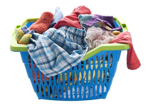 cloth laundry bosisto s