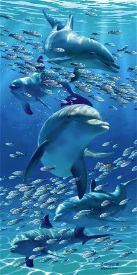 animales del mar gran delf n imagenes de delfines en el mar para dibujar imagenes