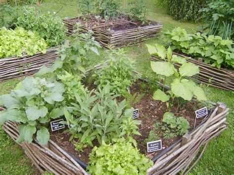 jardin de plantes aromatiques plessis aromates la maison bleue
