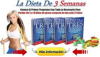 la biblioteca de v descarga libro la dieta la dieta de 3 semanas dieta para bajar la panza en 3 semanas mejor libro de dieta existente