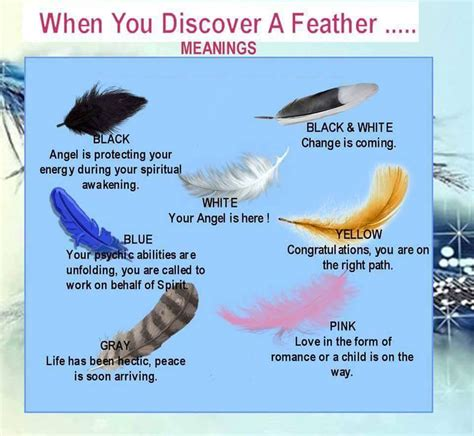 Feather Meanings Angel Practitioners Feathers Meanings