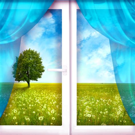 tende con frasi frasi sulle finestre