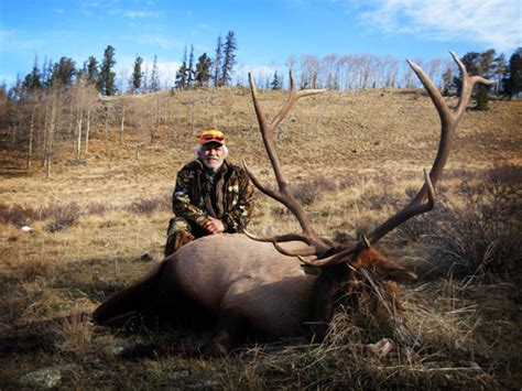 big outfitters colorado elk guided elk and deer hunts autos post