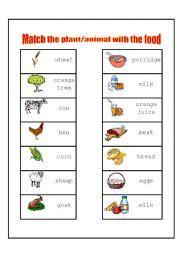 english teaching worksheets plants