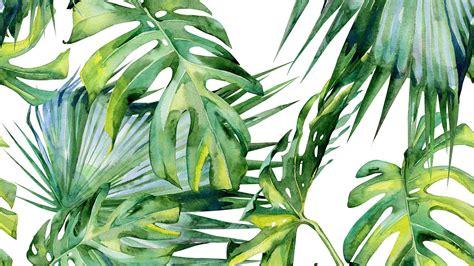 dschungel pflanzen jungle holt euch mehr pflanzen ins haus mycs