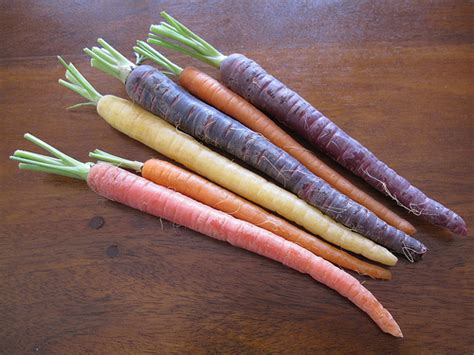original color of carrots carrots a colourful history from purple to orange