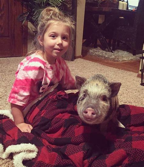 chelsea houska teen mom pig 1000 images about wishlist fur babes on pinterest