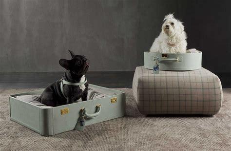 cucce e cuscini per cani cucce e cuscini per amerigo