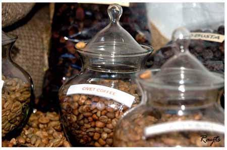 Kopi Luwak Goreng Asli Coffee Choff Kopi Sangrai 250gram 100 Arabika proses produksi kopi luwak topik warna warni