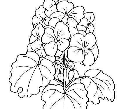 imagenes flores de tela dibujos para pintar flores tulipanes dibujos para