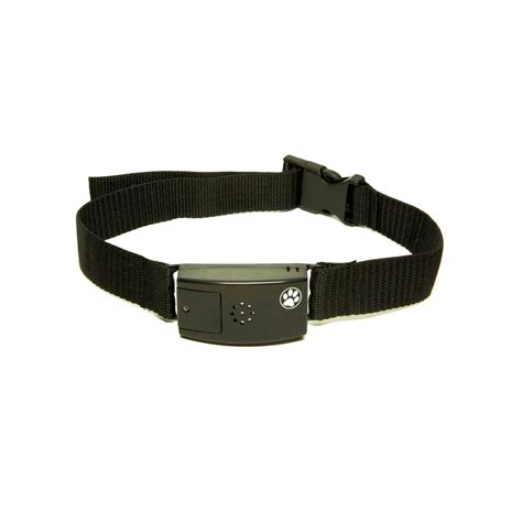 shock collar petco pet tags adjustable no bark collar medium large petco store