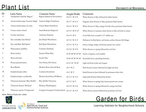 top 28 list of landscaping plants gould s lawn and