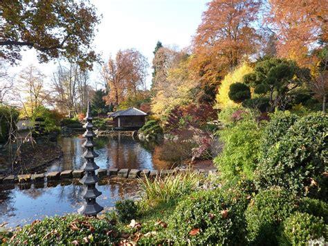 japanischer garten kaiserslautern parken bonsai gemeinschaft zur kirschbl 252 te in den japanischen