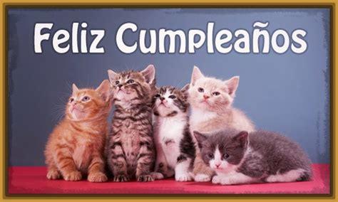 imagenes cumpleaños gatitos las mejores imagenes de feliz cumplea 241 os con gatos