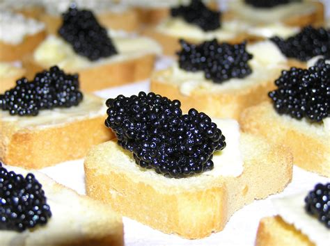o day s travel woes 91 how i taught the world to eat caviar dan o day talks about radio