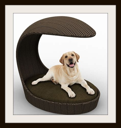 cozy comfort give your pet cozy comfort with luxurious dog beds11