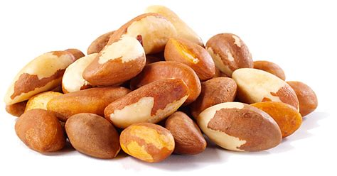 healthy fats besides nuts we re nuts for nut milk the nutty scoop from nuts