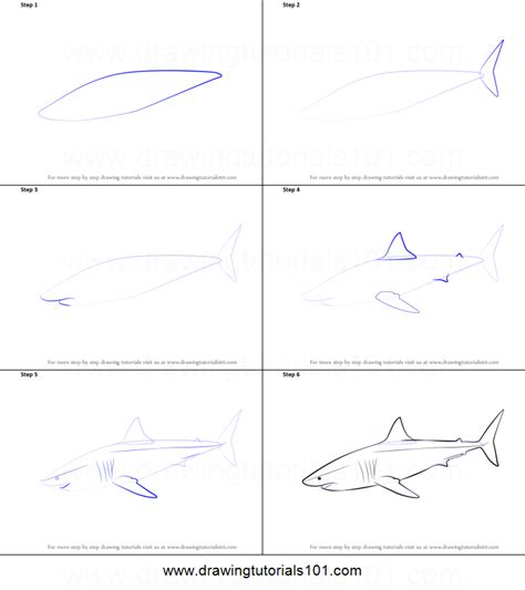 steps on how to draw doodle how to draw a great white shark printable step by step