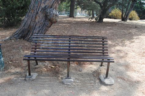 perdono testo tiziano ferro la panchina dimenticata l 236 tiziano ferro scrisse xdono