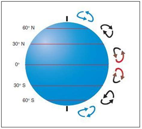 pattern of cell theory airplane weather theory