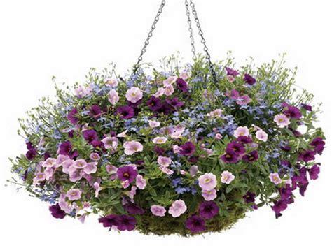design hanging flower baskets gardening landscaping various design of hanging basket