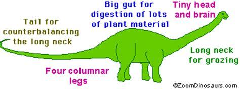 diplodocus dinosaur enchanted learning software