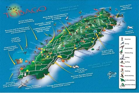 Find In And Tobago Snorkeling Spots On The Caribbean Tobago