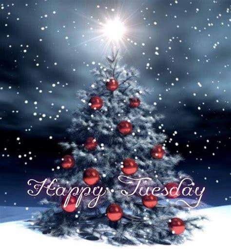 happy tuesday winter snow weekdays christmas tree quotes funny christmas tree christmas