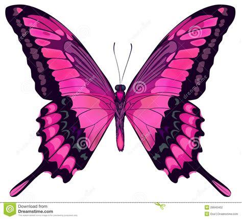 Hermosa Photo Frame Minimalis5r Blue beau papillon illustration de vecteur image du