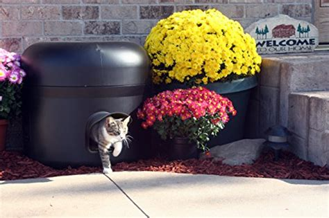 how to keep cats outdoor furniture keep those outdoor cats warm this winter the pet