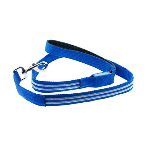 led leash led lite up leash blue 4id touch of modern