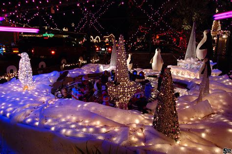 christmas light shows in sacramento in limos party buses