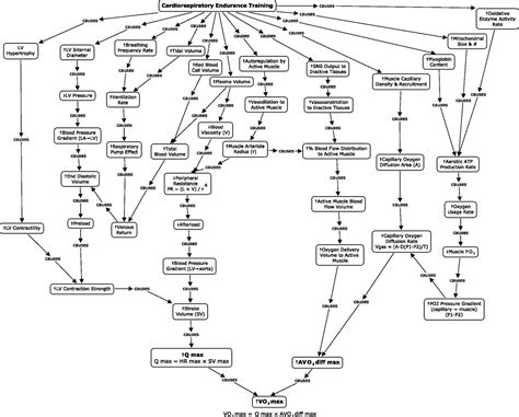 suzuki 250 quadrunner wiring diagram wiring diagram schemes