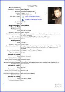 5 Curriculum Vitae English Expense Report