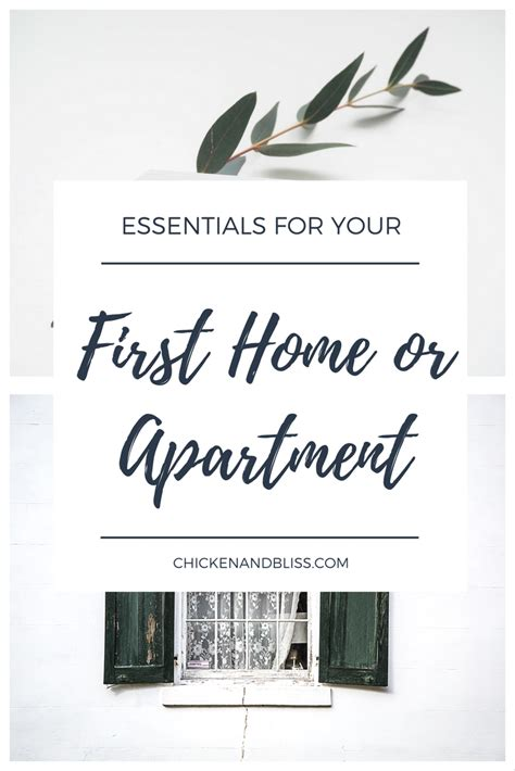 essentials for your first house essentials for your first home or apartment chicken and